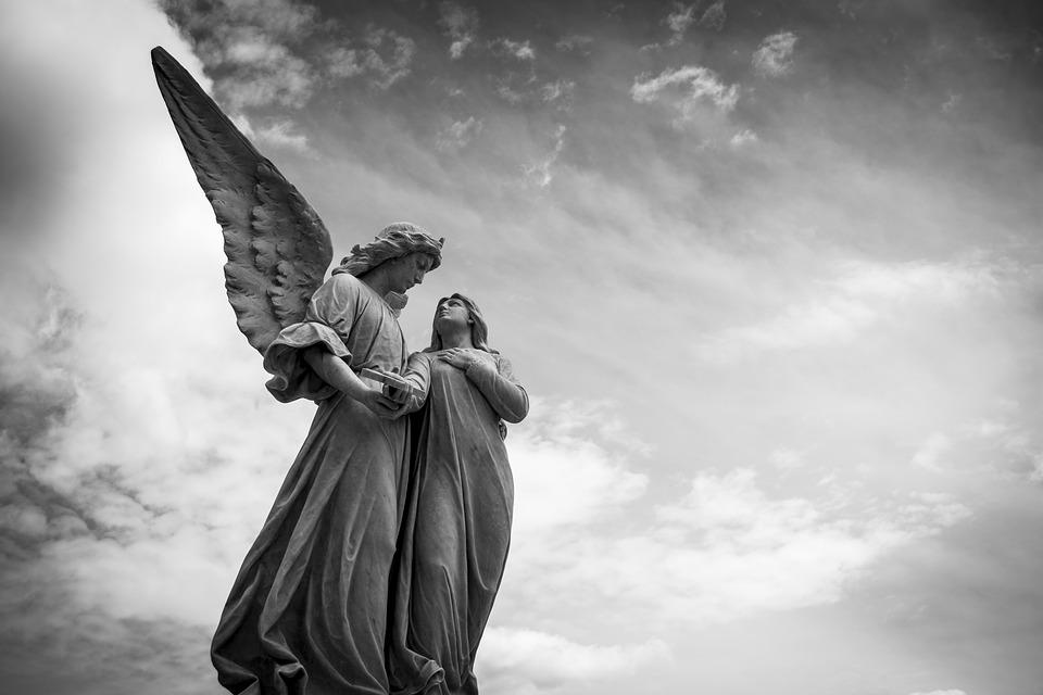 O aripă ce zăcea neatinsă / Diana Hamza