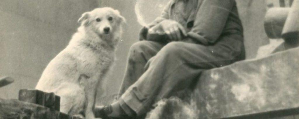 câinele cerșetorului / Basarab Păltănea