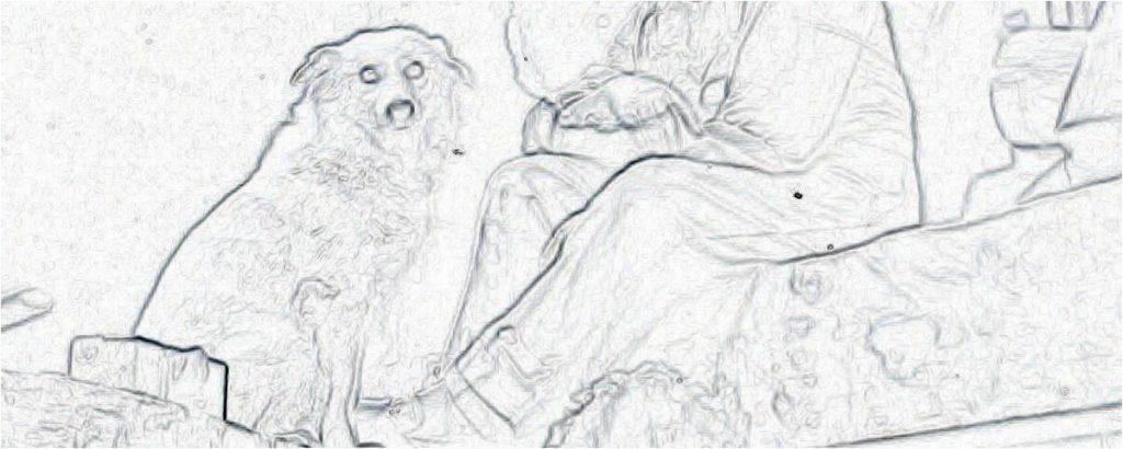 cîinele cerşetorului / Basarab Păltănea